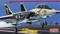 US Navy F-14A Fighter Aircraft (Tomcat) - Image 1
